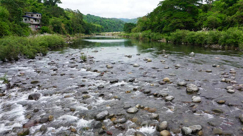 Landscape with a mountain river. River stones and streams of water in the jungle Live Action