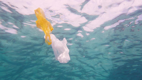 Plastic bag in the sea Live Action