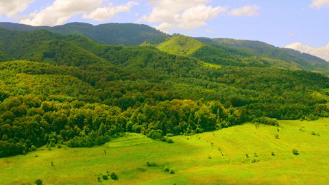 summer landscape in highlands Live Action