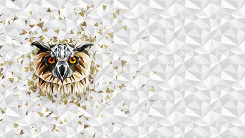 Polygonal Owl background. Animal head. Low polygon loop animation. Geometric wildlife. Polygonal Animation
