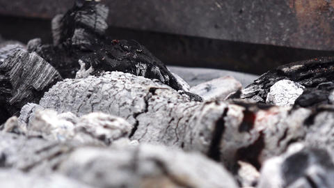 coals for the barbeque: cook the meat, roasting, grilling Footage