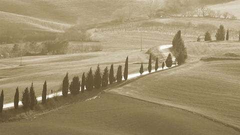 typical tuscany countryside landscape with cypresses Footage