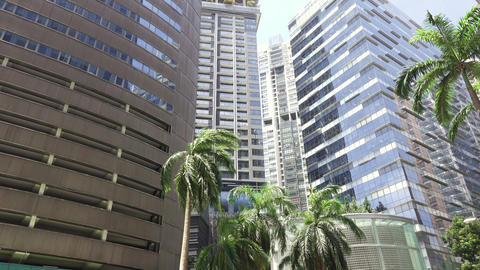 Office Skyscrapers and Palm Trees on a Sunny Day. HD GIF