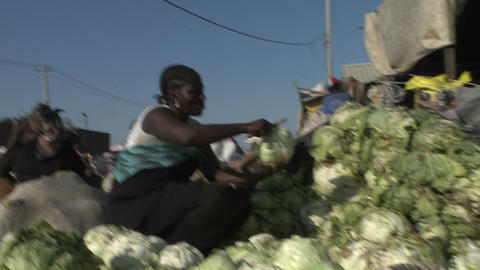 Poor Haitians live on the streets of Haiti followi Stock Video Footage