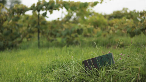Rack focus on a small wooden sign in a field of gr Stock Video Footage