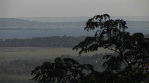 Medium-shot of the branches of an Acacia tree with rolling Ugandan hills in the distance Footage