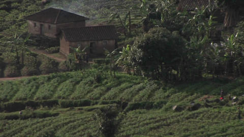 Farm buildings sit in the fields of rural Rwanda Stock Video Footage
