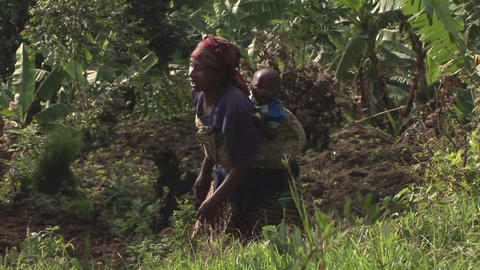 Tracking-out of an African woman climbing a green hill... Stock Video Footage
