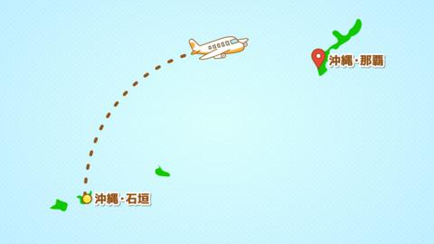 シンプルな飛行機移動の説明動画(石垣発-那覇着)文字だけ CG動画
