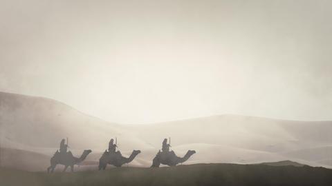 Arabian Warriors in an Arabian Desert Riding Camels Live Action