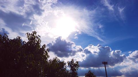 Summer Sky Fotografía