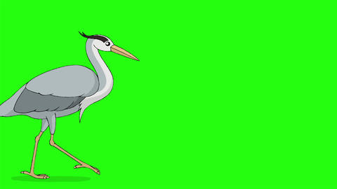 Heron flies in the sky chroma key Animation