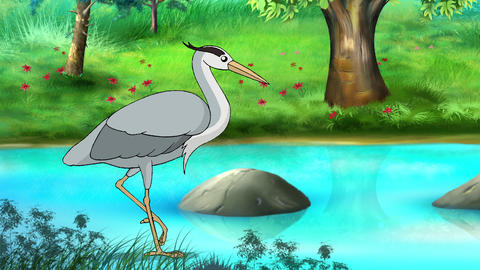 The heron goes to hunt a frog Videos animados