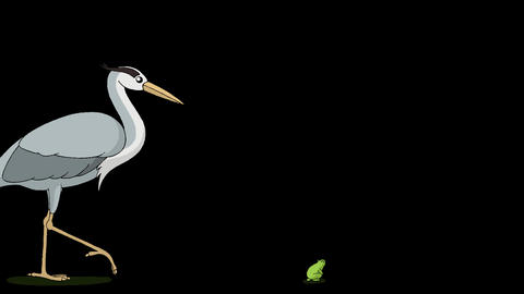 The heron goes to hunt a frog alpha mate Videos animados