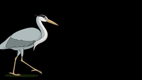 Heron walks alpha mate Videos animados