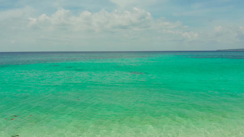 Tropical beach and blue clear sea Live Action