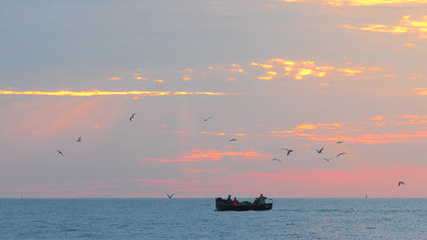 Sailing boat at sunset in the sea. Seagulles flying over fishermen in a boat swim on the sea at Live Action