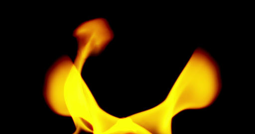 realistic fire flames burn movement on black background loop Live Action