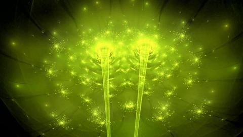 Fractal dancing floral lights seamless loop Stock Video Footage