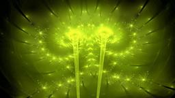 Fractal dancing floral lights seamless loop Animation