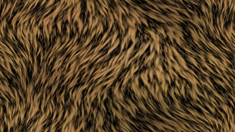 Fur generated seamless loop video Animation