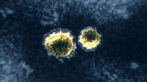 Virus and bacteria under the microscope. Coronavirus, COVID-19, Influenza, SARS, MERS. Microbiology Animation