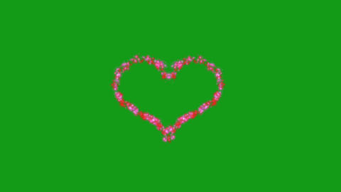 Pink heart motion graphics with green screen background CG動画