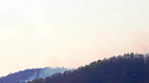 Aerial firefighting with wildfire during drought in mountain. Helicopter put out Live Action