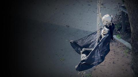Skeleton On Swing Footage