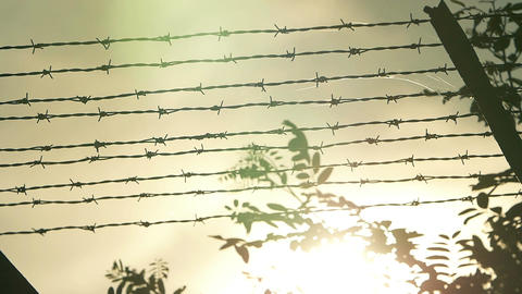 Barbed Wire Fence at sunset: slow motion footage Footage