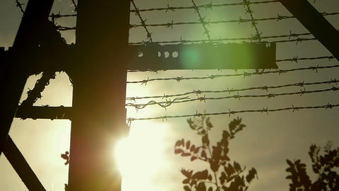 barbed wire with sunset in background Footage