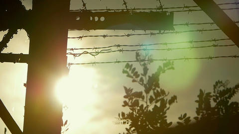 the sun over the prison: fence with barbed wire Footage