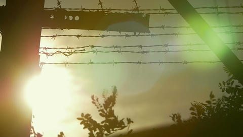 the sun beyond the barbed wire Footage