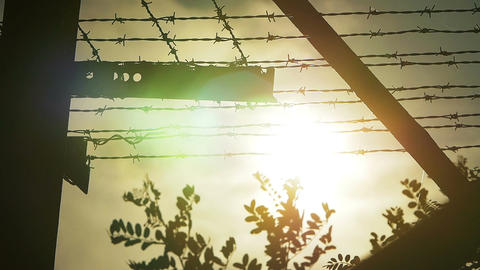 Jail fence topped with barbed wire with sky on background Live Action
