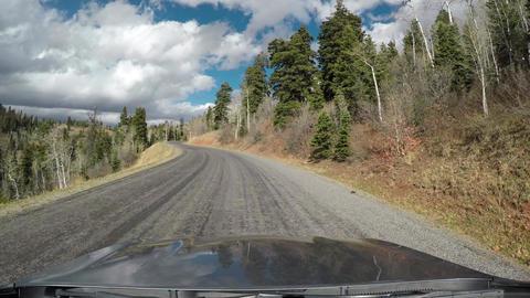 Deer cross road in front of car POV mountain 4K 970 Footage