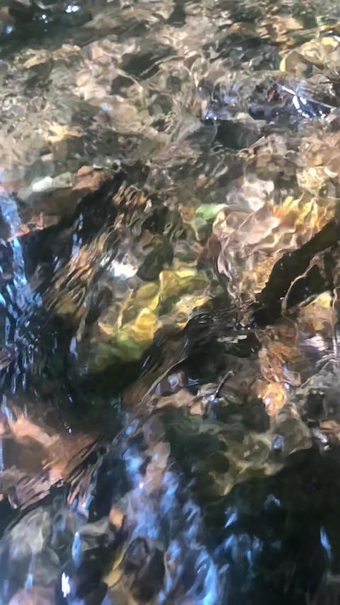 Slow motion high-angle footage of flowing stream over colorful stones Live Action