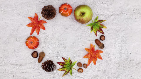 Autumn leaves and autumn yields making circle with empty space for text. Stop motion Animation