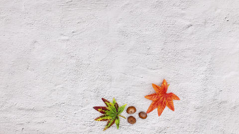 Autumn decoration make circle frame for text. Stop motion CG動画