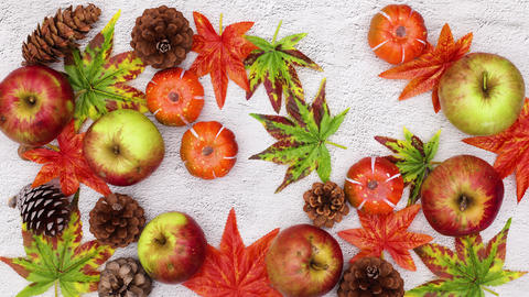 Autumn leaves and yields filling background. Stop motion CG動画