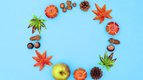 Autumn leaves and yields make round frame or text. Stop motion CG動画