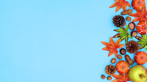 Autumn decoration move on right side of blue theme. Stop motion CG動画