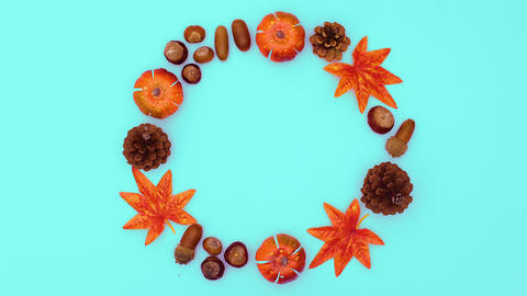 Autumn leaves and nuts move one by one in circle on green theme. Stop motion Animation