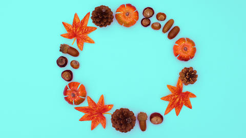Autumn nits and leaves and pine cones move in circle. Stop motion CG動画