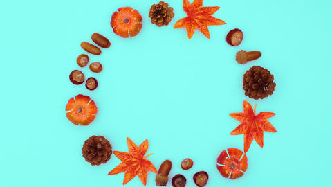 Autumn nuts, leaves and pine cones make round frame. Stop motion CG動画