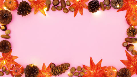 Blinking lights on autumn frame for text or title. Stop motion CG動画
