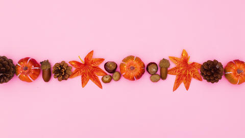 Autumn leaves, pumpkins, pine cones and nuts appear in line and disappear. Stop motion CG動画