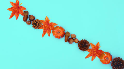 Autumn leaves, pine cones, pumpkin and nuts appear in line on different sides. Stop motion CG動画