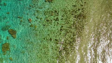 Aerial view of calm sea water. Top view of a clean ocean water near a coast Live Action