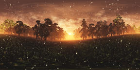 Magic Forest in the Sunset with Fireflies VR360 3D Illustration VR 360° Photo