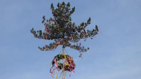 Maypole in wind Footage